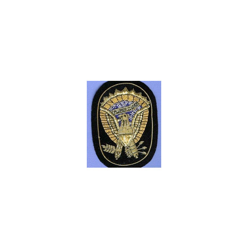 OFFICERS ARMY EAGLE HAT INSIGNIA