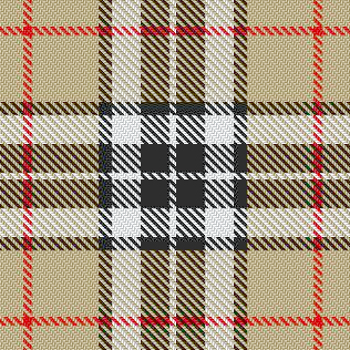 Camel Thompson Tartan No 66