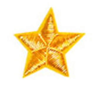 Collar Stars for Field Officers