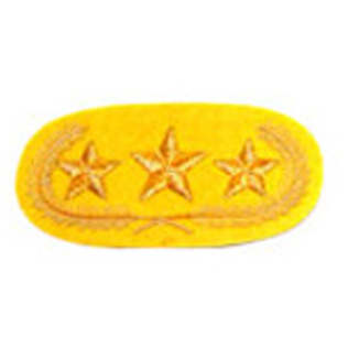 General Officers Collar Patches RQ