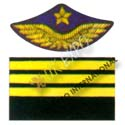 General Staff - Captain