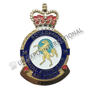 Squadron Air Force Badge